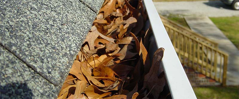 Ventura County residential roofers can help you maintain your roof and gutters.